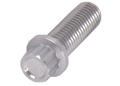 12 Point Bolts